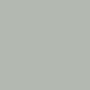 Zinkgrå RAL 7038